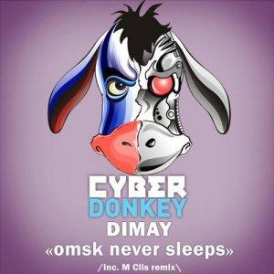 Omsk Never Sleeps