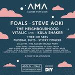 Steve Aoki e il live di Vitalic all'AMA Music Festival