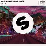 Vintage Culture & RICCI – Later (Original Mix)